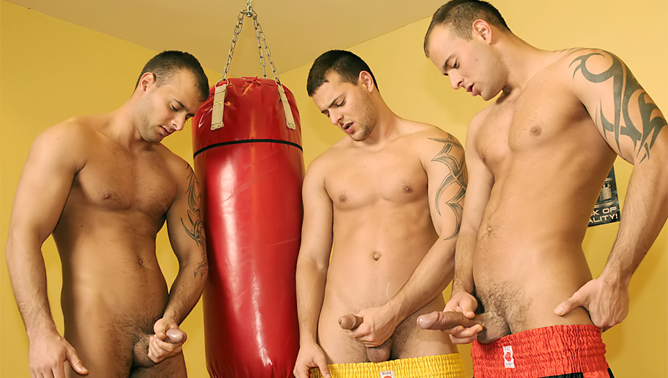 Boxing three some Solo