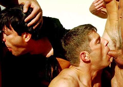 Hot House gay dvd porn video