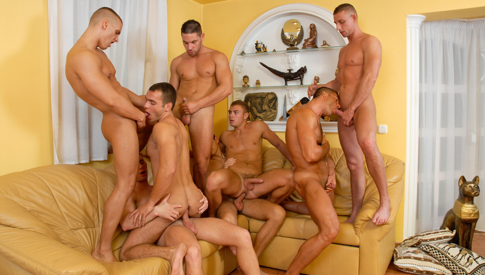 Breeding Party 01