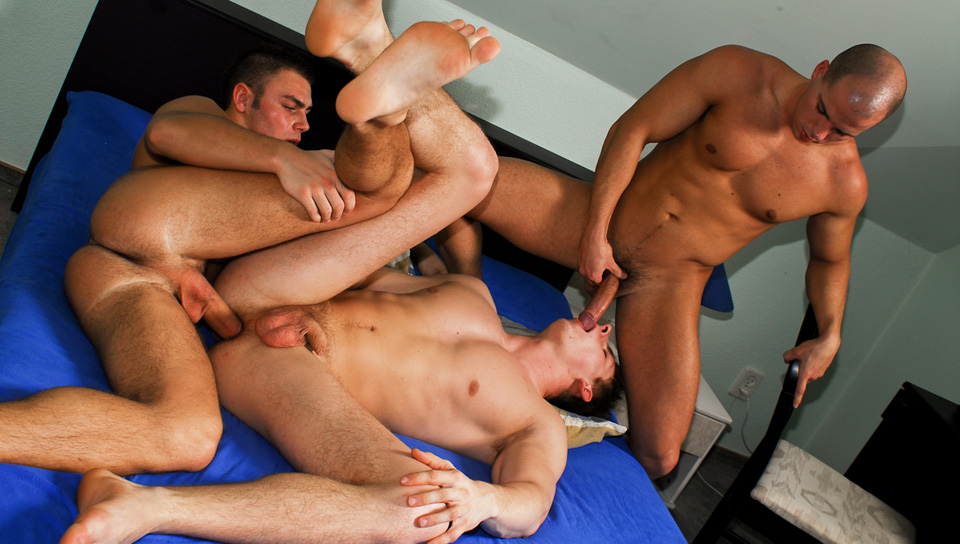 Breeding Party 02