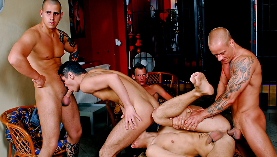 Breeding Party 04